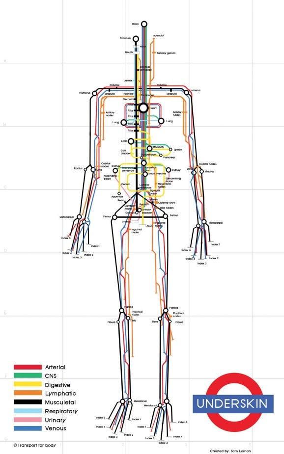 human_subway_map_sam_loman