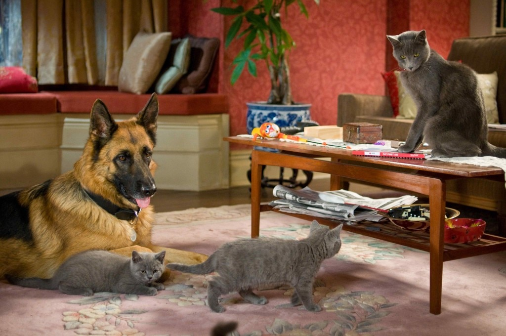 Film Review Cats & Dogs: The Revenge of Kitty Galore