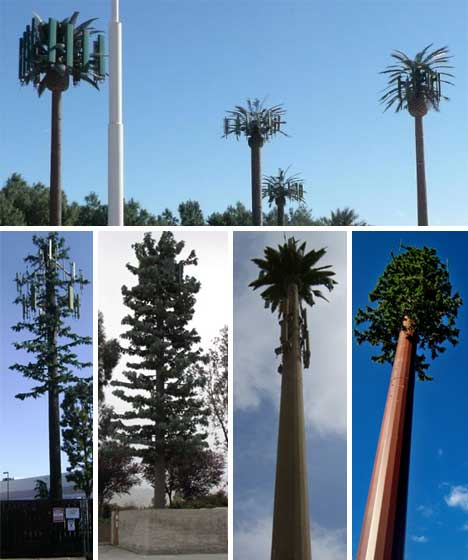 fake-trees-hiding-cell-towers